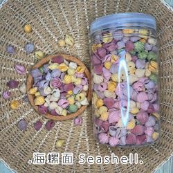 Noodles [Seashell]