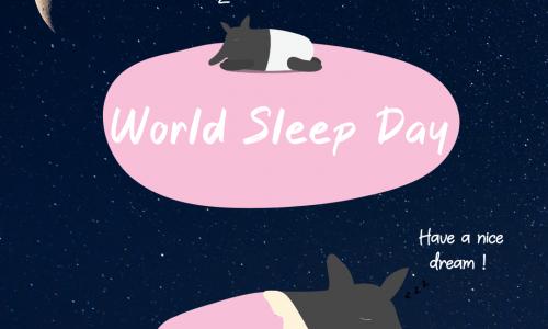 世界睡眠日 之 睡眠的重要性