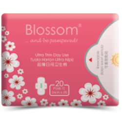 BLOSSOM Day Use Ultrathin Wing 240mm