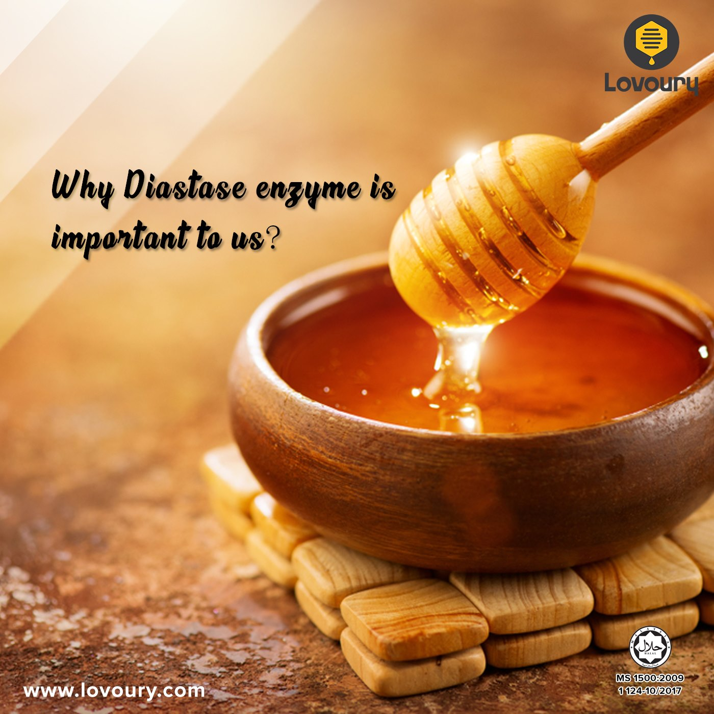 Why Diastase Enzyme is important to us?